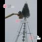 Монтаж высотных елок